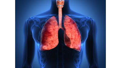 inhalationssteroider har en anti inflammatorisk effekt